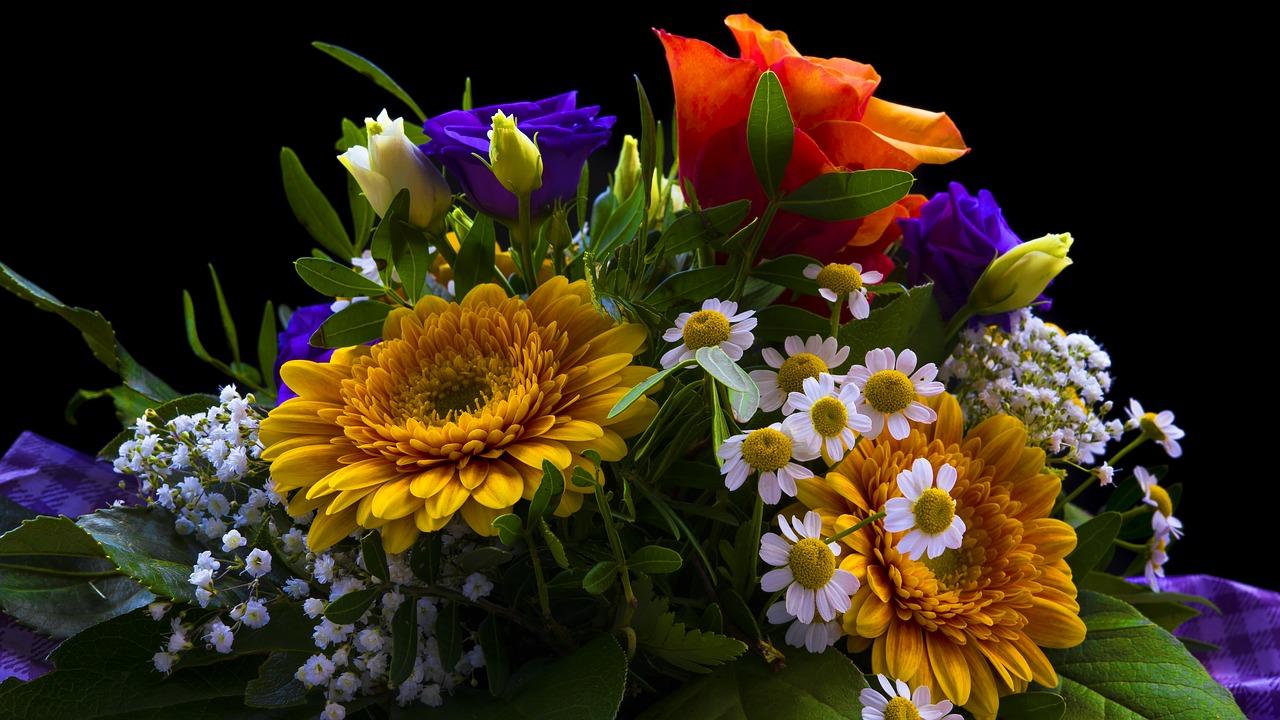 黒バックのお花